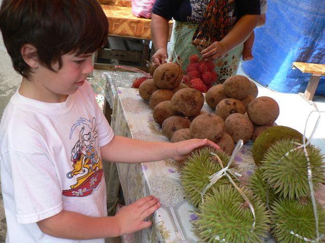 m-durian